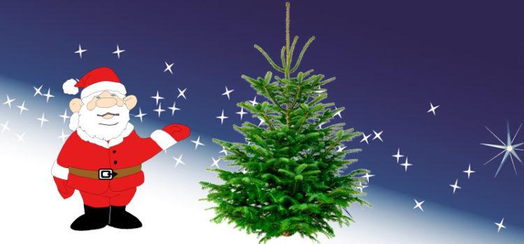 Wir schenken* Ihnen Ihren Weihnachtsbaum!